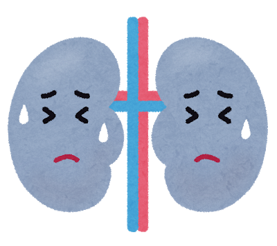 透析治療と腎臓の関係